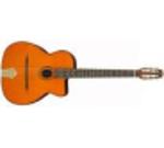 Image de la catégorie guitares manouches
