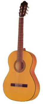 Picture of Guitare Flamenco ESTEVE 2GR5F