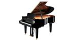 Picture for category Pianos à Queue