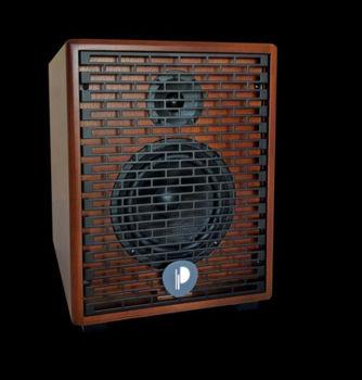 Image de Amplificateur Electro-acoustique Natural6 CHERRYWOOD 140W